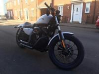 Harley Davidson XL 883 Iron - Immaculate