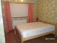 Double room available for a female to rent in 3 bedroom house 5 minutes walking to victoria centre.