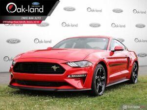 2019 Ford Mustang GT Premium $1000 OAK-LAND BONUS APPLIED TO...