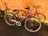 """Raleigh Pioneer Caprice. Serviced, 21"""" Frame, Free Lights, Lock & Delivery."""