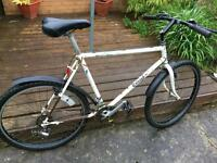 Classic Raleigh large frame men's Reynolds 501 frame Gwo