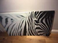 Large zebra picture canvas