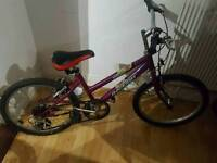 Children's bicycle free delivery