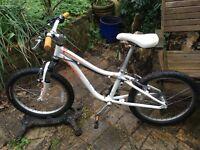 """Hotrock Specialized girls bike. 20"""" wheels."""