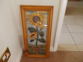 Sun flowers picture in wooden frame good condition