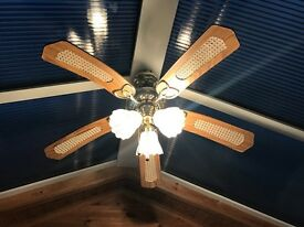Ceiling fan conservatory sun room Light