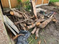Free firewood.