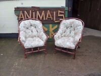 Conservatory chairs two matching very comfy dark wood wicker frame £10