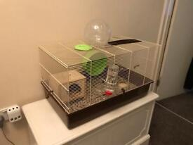 Cage for hamster or rats
