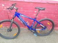 Claud butler men's mountain bike