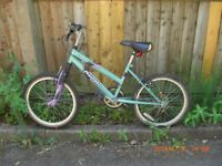 Childrens bicycle found abandoned in True Lovers Walk