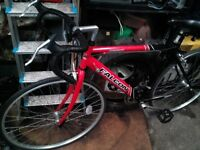 FALCON PELOTON ALLOY RACER/BIKE/BICYCLE/CYCLE/SPORT