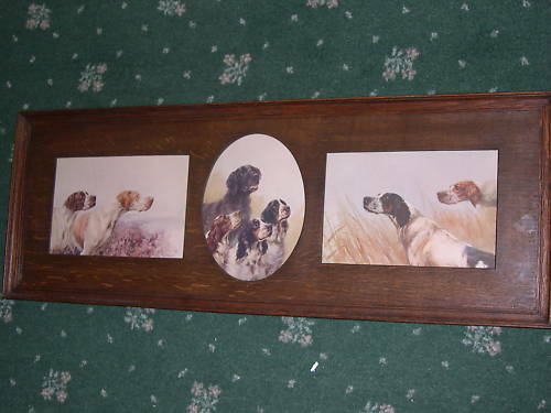 ANTIQUE GUNDOG DOG PICTURE MAUD EARL 1910 LTD ED
