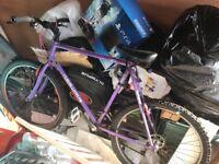 Claude butler mountain bike