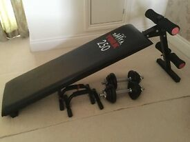YORK 250 Fitness Bench with Press Up Bars