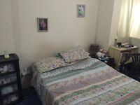 MANOR PARK 2 DOUBLE BEDROOM GARDEN FLAT ON 4th avenue