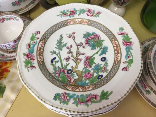 "8 Early Coalport~ Indian Tree~Floral~Scalloped Edge~England 9 1/4"" Dinner Plates"
