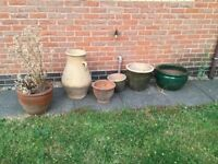 Garden pots large £15 small £10 can deliver if you live lical