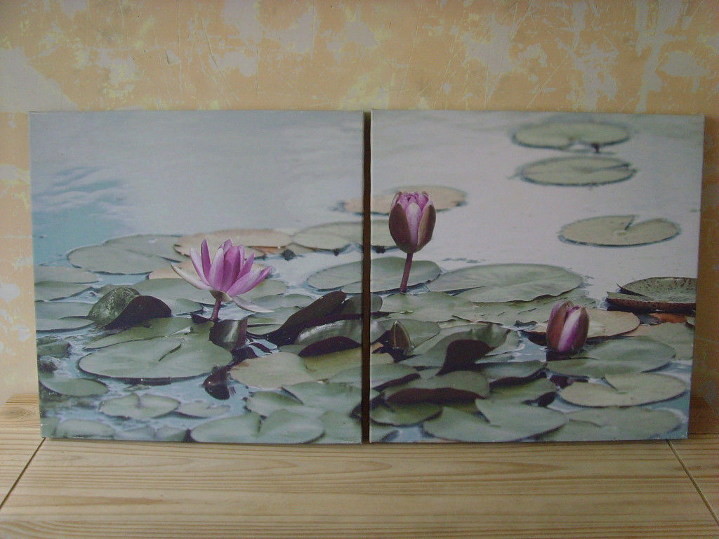 Two matching lotus flower canvas prints free delivery in two matching lotus flower canvas prints free delivery mightylinksfo
