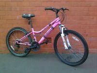Apollo mountain bike - good condition !