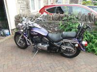 Kawasaki VN800 Classic 2003 (53)