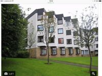 One Bedroom Flat to Let in Furlongs, Hamilton