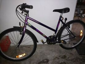 Raleigh Mountain Bike - Ladies / Girls