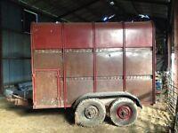 Ifor Williams trailer 10ft Livestock Sheep Cattle Horses trailer