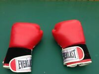 Everlast Boxing Training Gloves - 14 Ounce - Hardly Used