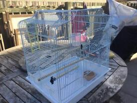 Bird Cage xxxxxxSOLDXXXXXXX