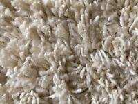 Cream shaggy immaculate rug