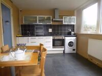 Room in friendly Peckham flatshare