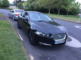 Lovely Jaguar XF