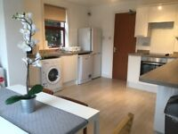 STUDENT FLAT TO RENT 55 scooniehill rd St. Andrews