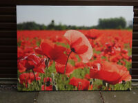 Field of Poppies Canvas wall art