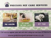 Dog walking/ Pet feeding/ Pet taxi