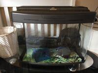 64l fishbox fish tank plus filter
