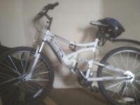 Dual suspention mountain bike