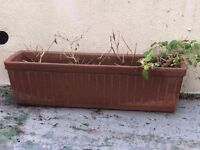 Medium Window Clay Terracotta Flower Bed
