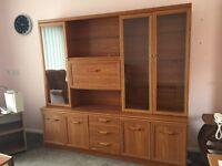 Large display cabinet storage unit