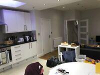 STUNNING 3 BEDROOM SPLIT LEVEL APARTMENT- STREATHAM HILL