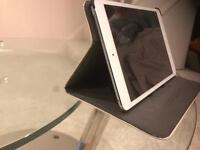 iPad mini 16GB with case