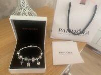 Original pandora charm bracelet