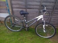 Lady's Raleigh bike