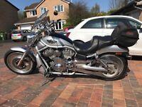 Harley Davidson 2003 VRSC V-Rod Anniversary model (Silver, Black and Gold) 12k miles