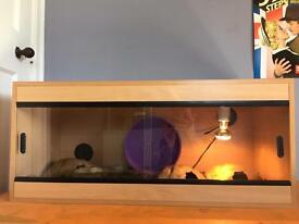 3ft Vivarium w/accessories
