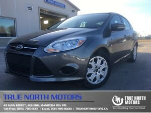2014 Ford Focus SE Heated Seats Local Clean Carproof