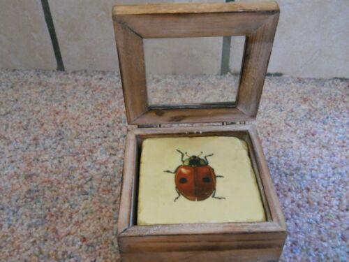 4 Vintage LADYBUG Heavy Stone Art Tile Coasters Insect Cork Back With Wood Box