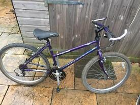 Raleigh Amazon Ladies Mountain Bike. Serviced. Free Lights & Delivery.