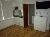 four brand new studio flats zone 2